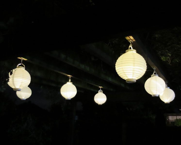 Paper lanterns turned on low cost way of lighting up your garden