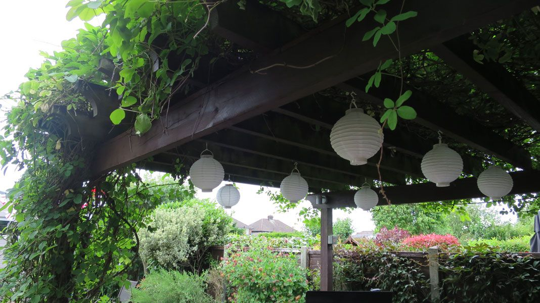 Low Cost Paper lanterns hanging from gezebo